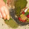 L'approche art et nature en Éducation à l'Environnement (EE)