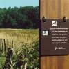 L'étang Jacquot