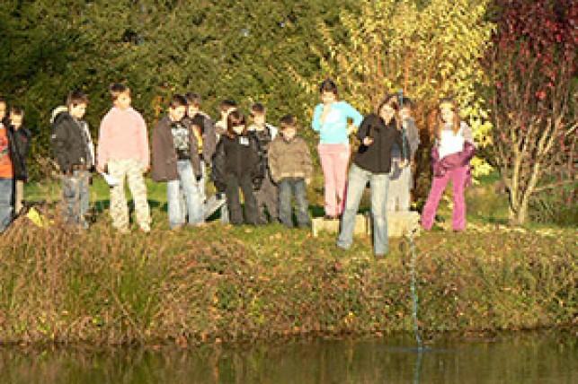 L'écosystème «étang»