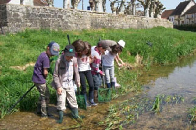 « Ricochets », travailler sur l'eau en pédagogie de projet