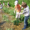 L'écosystème «rivière»