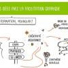 Formation facilitation graphique : inscrivez-vous !