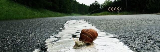La mobilité rurale en Bresse