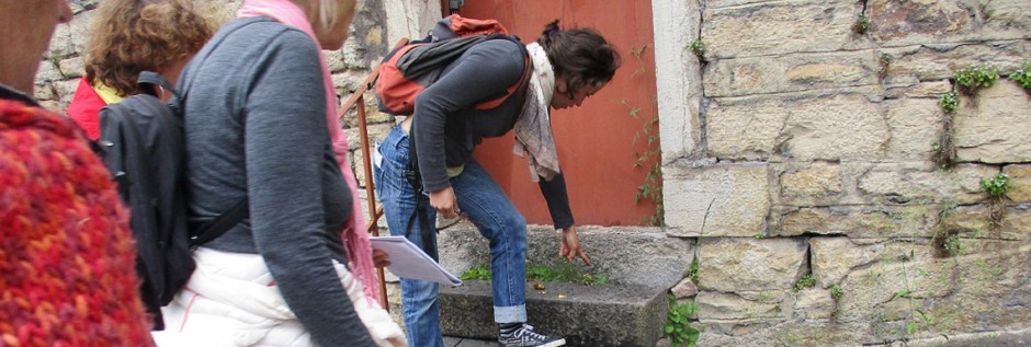 Parlons de plantes sauvages des rues