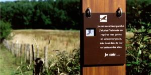 sentier_jacquot