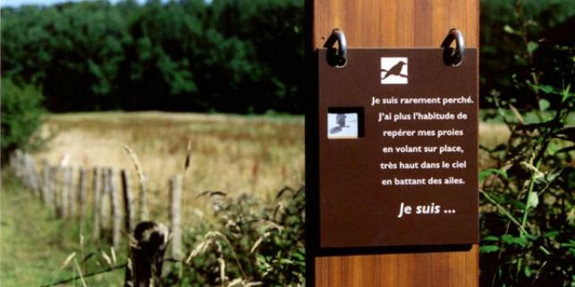 Sentier étang Jacquot